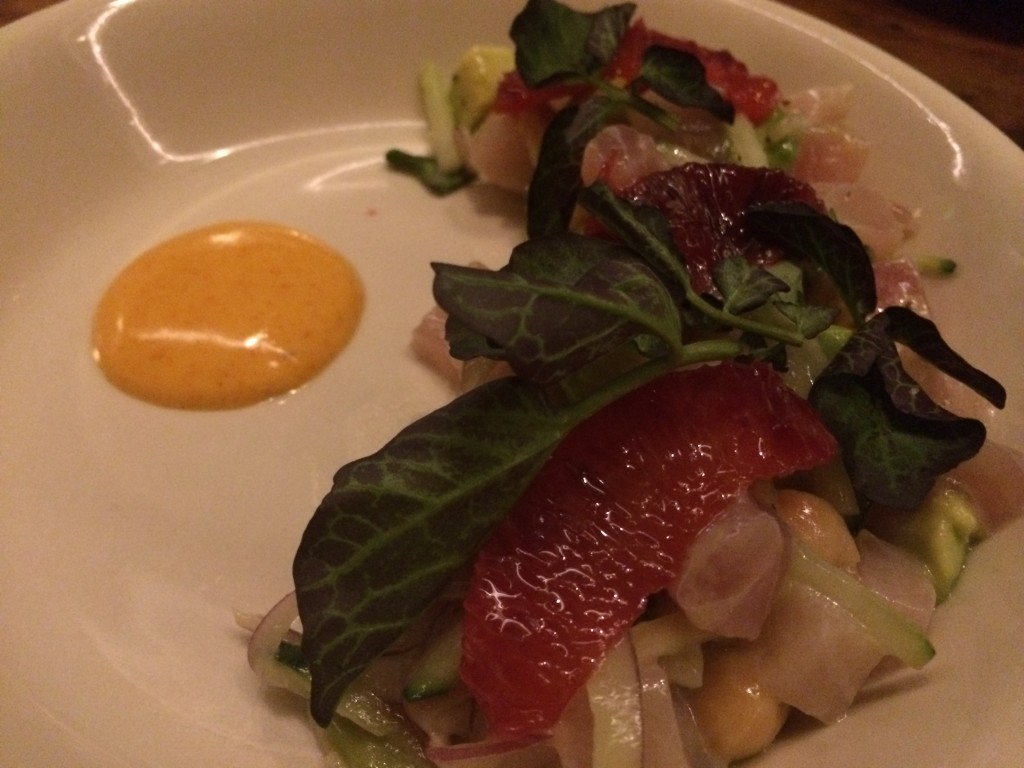 Raw Hamachi Salad, Chickpea, Avocado, Cucumber, Preserved Lemon and Blood Orange